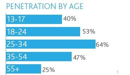 iPad用户满意度达84% 最大用途是上网浏览