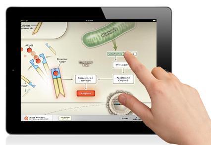 出版200年的《新英格兰医药学杂志》推出iPad版