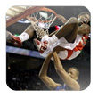 NBA扣篮拼图 bada版v1.0 NBA Dunks