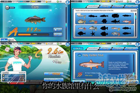 休闲游戏:超级巨星钓鱼 享受钓鱼的乐趣4