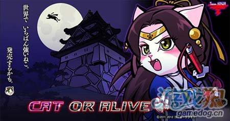 Marvel漫画为蓝本卡牌游戏武士猫SamuraiCats来也1