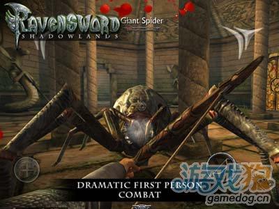 角色扮演游戏:乌鸦之剑暗影大陆 也许包装大于实质2