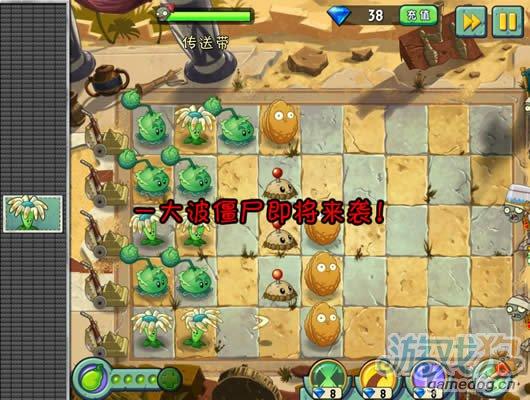 植物大战僵尸2中文版神秘埃及传送带攻略7