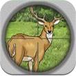 四季狩獵3DAndroid 版v1.2.4含數據包下載