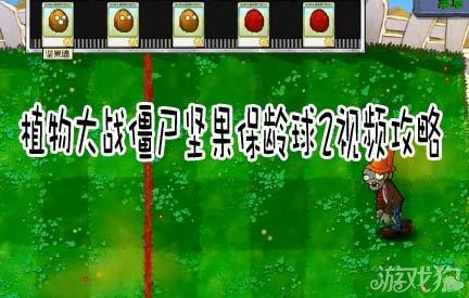 植物大战僵尸坚果保龄球2视频攻略