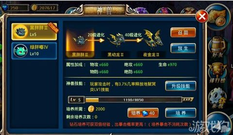 中国神兽黑龙_