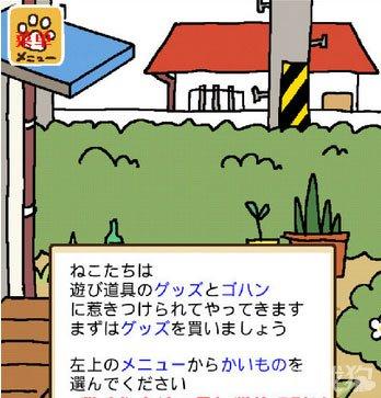 猫咪后院中文汉化界面详细图解