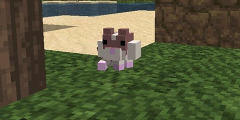 我的世界迷你可爱的可饲养宠物 仓鼠mod