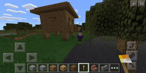 我的世界沼泽地带冒险 女巫和她的小屋