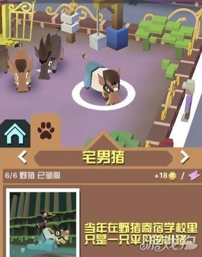 疯狂动物园宅男猪驯服技巧动物图鉴