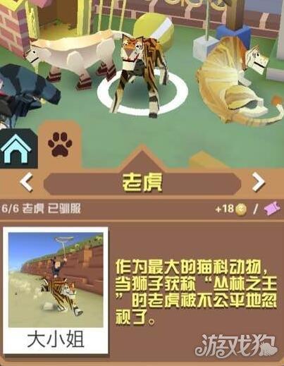 疯狂动物园丛林之王老虎获取方式介绍_疯狂动