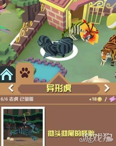 疯狂动物园中是有许多的老虎的,玩家在挑战的时候可以在不同的地图中