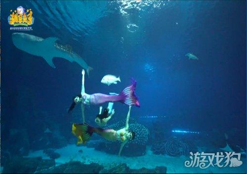 壁纸 海底 海底世界 海洋馆 水族馆 桌面 500_353