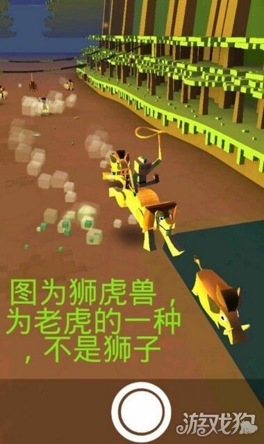 疯狂动物园骑乘老虎注意事项介绍