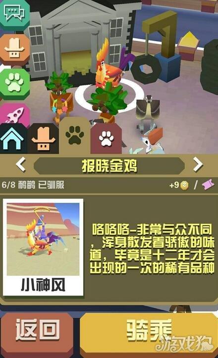 疯狂动物园报晓金鸡成濒危动物,春节的时候,有许多的节日稀有动物
