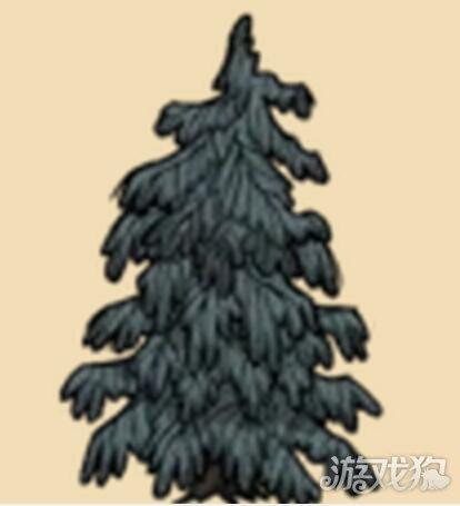 饥荒疙瘩树其实是变种树类才不是常青树呢