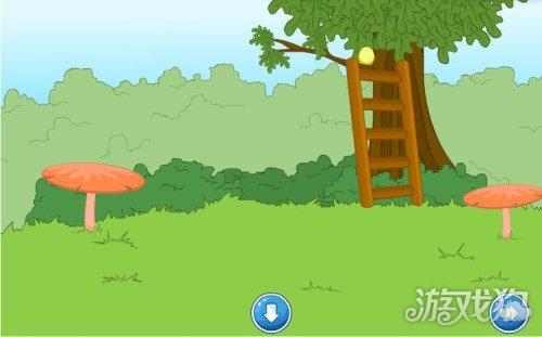 逃离茂盛蘑菇森林攻略教你顺利通关破解游戏密码