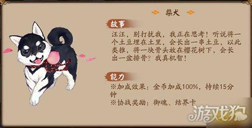 阴阳师宠物后院新增宠物 阴阳师新小动物一览