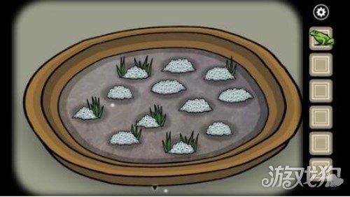銹湖天堂島成功渡过蛙災方法介紹 少年偏愛青蛙