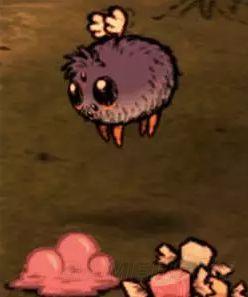 饥荒宠物大全 资料图片
