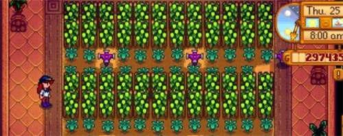 星露谷物语啤酒花种子多少钱图片