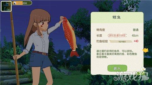 《【天游代理主管】小森生活钓鱼技巧是什么 钓鱼技巧教学攻略》
